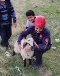 Elazığ'da Kuyuya Düşen Kuzuyu İtfaiye Kurtardı