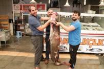 2 Metrelik Dev Balık Görenleri Şaşırttı