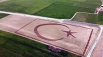 70 Dönümlük Tarlasına Traktörüyle Türk Bayrağı Çizdi