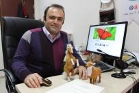 'Eski Türkçe'de Çok İlginç Hayvan İsimleri Açıklaması Kedi 'Çetük', Kelebek 'Baybayuk'