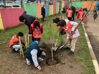 TEMA Okullarda Ağaç Sevgisini Aşılıyor