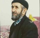 Bingöl'de Kayıp Yaşlı Adam, 300 Kişilik Ekiple Aranıyor