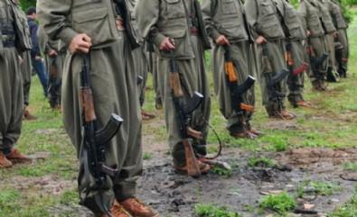 Terör örgütü PKK'dan silah zoruyla propaganda!
