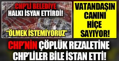 Çöplük rezaletine CHP'liler bile isyan etti: Bu başkan Bilecik'in başına gelmiş en büyük felakettir