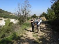 Kaçak Keklik Avcısı Jandarmanın Tuzağına Düştü