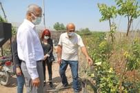 Başkan Tarhan, Gönüllü Serasında Gönüllü Üreticilerle Buluştu