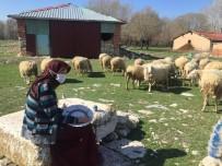 Çini Tabak Yaparak Aile Ekonomisine Katkı Sağlıyorlar