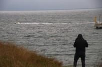 Balıkçıların Ağına Takıldı