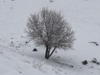 Nisan Ayında Bile Kar Yağdı