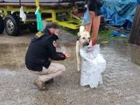Polis Destek Oldu, Sokak Hayvanlarını Koruma Derneği Barınak Yaptı