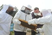 'Kırklareli Arı Islah Projesi' Yerinde İncelendi