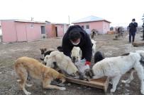 Başkan Demir,  4 Nisan Dünya Sokak Hayvanları Günü'nü Unutmadı