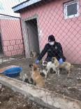 Polisler, 4 Nisan Dünya Sokak Hayvanları Günü'nü Unutmadı