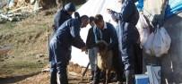 Bitlis'te Hayvan Hastalıklarına Karşı Aşılama Çalışması
