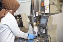 Düzce Üniversitesi Yeni Markasıyla Üretime Başladı