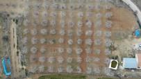 Elazığ'da Ağaçlar Beyaz Gelinliğini Giydi, Muhteşem Görüntü Ortaya Çıktı