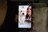 MS Hastası Genç Kız 'O Olmadan Yaşayamam' Dediği Köpeğini Getirene 2 Bin Lira Ödül Verecek