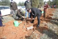 Beyşehir'de Şehitler Ve Gaziler İçin Orman Fidanları Toprakla Buluşturuldu