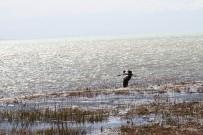 Beyşehir Gölü'nün Yüzeyi Çamur Rengine Dönüştü