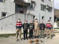 Siirt'te Kaçak Avcılık Yaptığı Tespit Edilen Şahıs Hakkında Tutanak Tutuldu