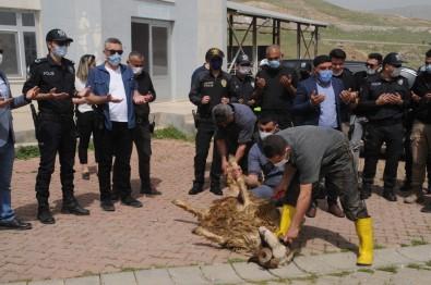 Cizre'de Şehit Polisler İçin Kurban Kesildi, Mevlit Okutuldu