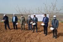 Siirt'te Fıstık Bahçelerine 2 Bin 295 Feromon Tuzağı Kuruldu