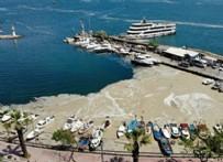Marmara'daki deniz salyası için Bakanlık harekete geçiyor!