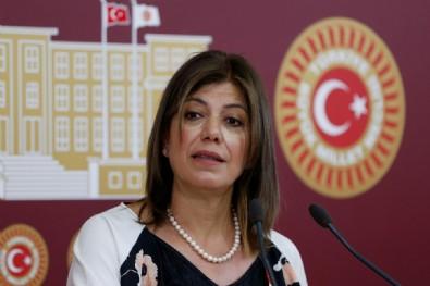 HDP'li Meral Danış Beştaş'ın 'sınır ötesi operasyon' hazımsızlığı