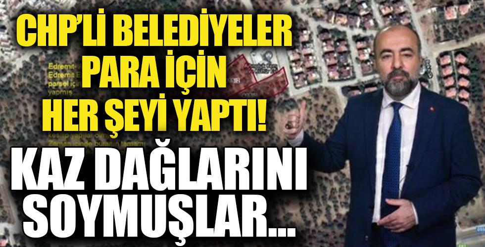 Kazdağları zeytinlik ve sahili CHP katliamına uğruyor! CHP'li siyasetçiler ve belediyeler rant alanına çevirdi