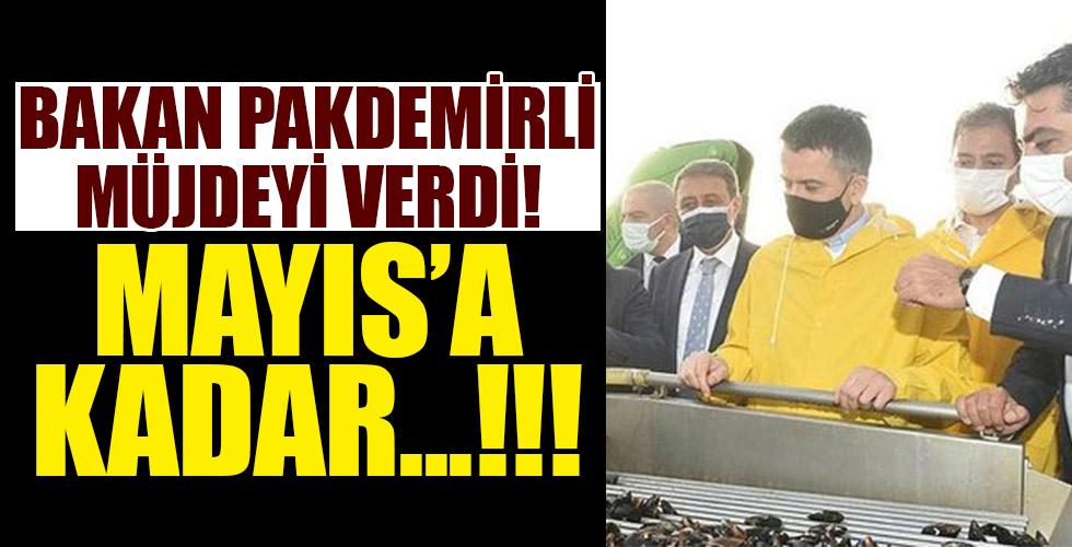 Tarım ve Orman Bakanı Bekir Pakdemirli'den kıyı balıkçılarına müjde!