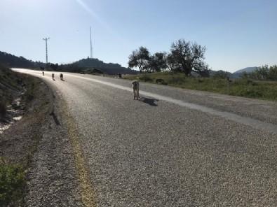 Bakıma muhtaç köpekleri ölüme terk eden İYİ Partili belediyeye ceza