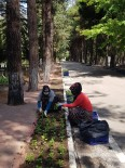 ALİ ORKUN ERCENGİZ - Burdur'da Mezarliklar Çiçek Açacak