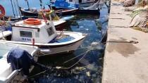 ANONIM - Bursa Büyüksehir Belediyesince Kurulan 'Bursasu' 7 Ülkeye Ihracat Yapiyor