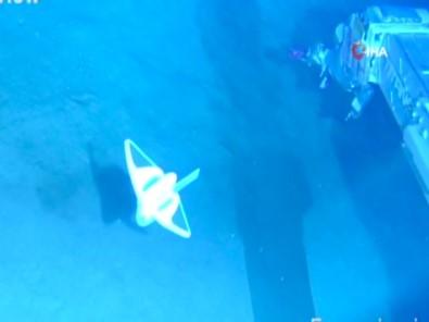 Derin Denizleri Gözlemleyebilmek Için Yumusak Robot Balik Gelistirildi