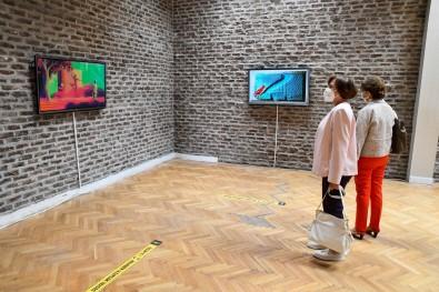 Eskisehir'in Ilk Dijital Sanat Sergisi Tepebasi'nda Açildi