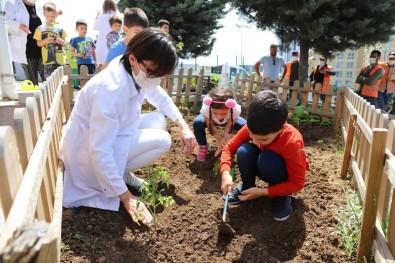 Kartalli Minikler, Yerli Ve Organik Tarimin Önemini Hobi Bahçelerinde Ögreniyor