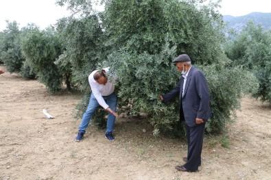 Kozan'da Hasar Tespit Çalismalarina Baslandi