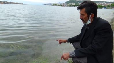 Marmara Denizi'ndeki Müsilaj Karadenizli Balikçilari Endiselendiriyor
