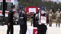 SİİRT ÜNİVERSİTESİ - Siirt'te 'Hayat Boyu Ögrenme Haftasi' Kapsaminda Sergi Açildi