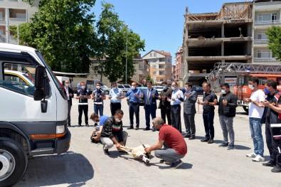 Türkeli'ye Araç Takviyesi