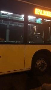 Metrobüste Kendisine Zarar Veren Sahsi Özel Harekat Polisi Aldi