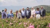 FARUK ÖZLÜ - 8 Belediye Baskani Ve 4 Milletvekili Isparta'da Gül Topladi