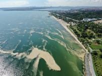 Deniz Salyasi Bu Kez Bakirköy Kiyilarini Sardi