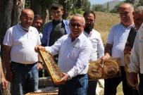 BAL ÜRETİMİ - TAB Genel Baskani Sahin Açiklamasi 'Arilarin Sigortasini Attirmayin'
