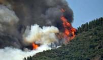 MARMARİS'TEKİ ORMAN YANGINI - Marmaris'teki orman yangınının boyutu ortaya çıktı!
