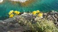 KRATER GÖLÜ - (Özel) Dünyanin Ikinci Büyük Kraterinde Renk Cümbüsü