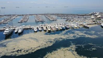 Çevre ve Şehircilik Bakanlığı'ndan genelge: Türkiye'nin en büyük deniz temizliği seferberliği...