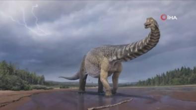 Avustralya'da Kitanin En Büyük Dinozoru Kesfedildi