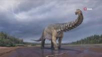 DINOZOR - Avustralya'da Kitanin En Büyük Dinozoru Kesfedildi