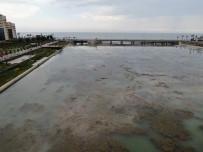 MENDERES TÜREL - Bogaçayi'nda Kirlilik Açiklamasi